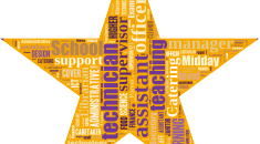 Stars in our schools graphic