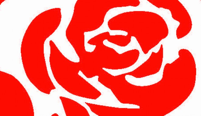 labour rose_colour