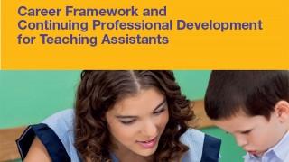 The UNISON NET career framework document