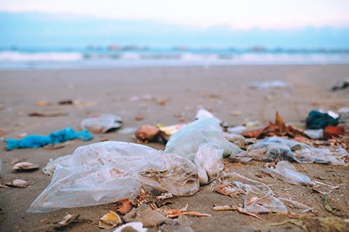 Litter left on a sandy beach
