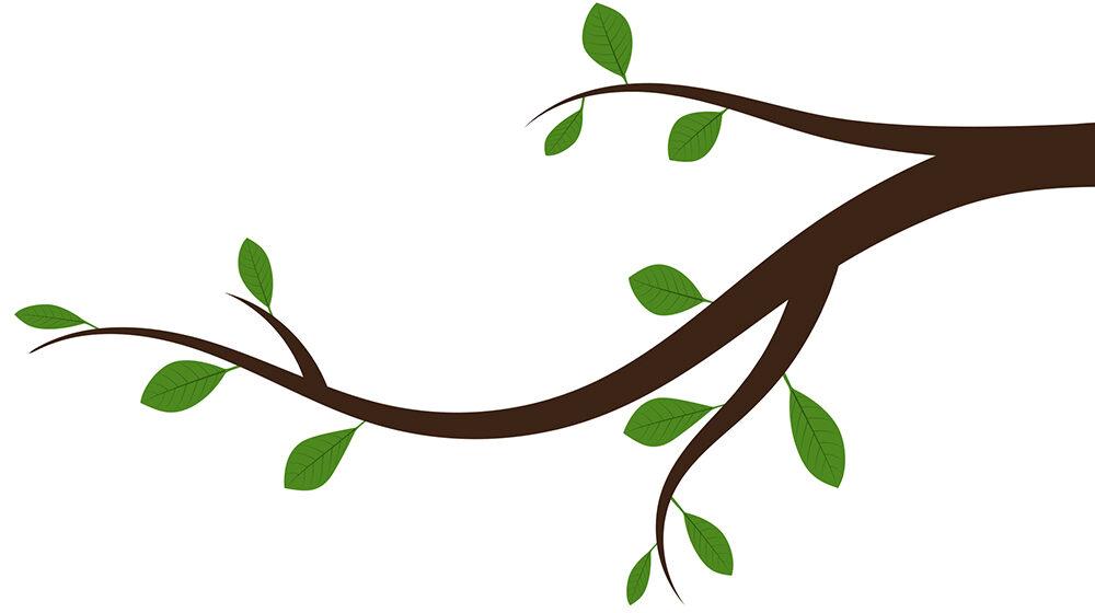 Tree branch graphic