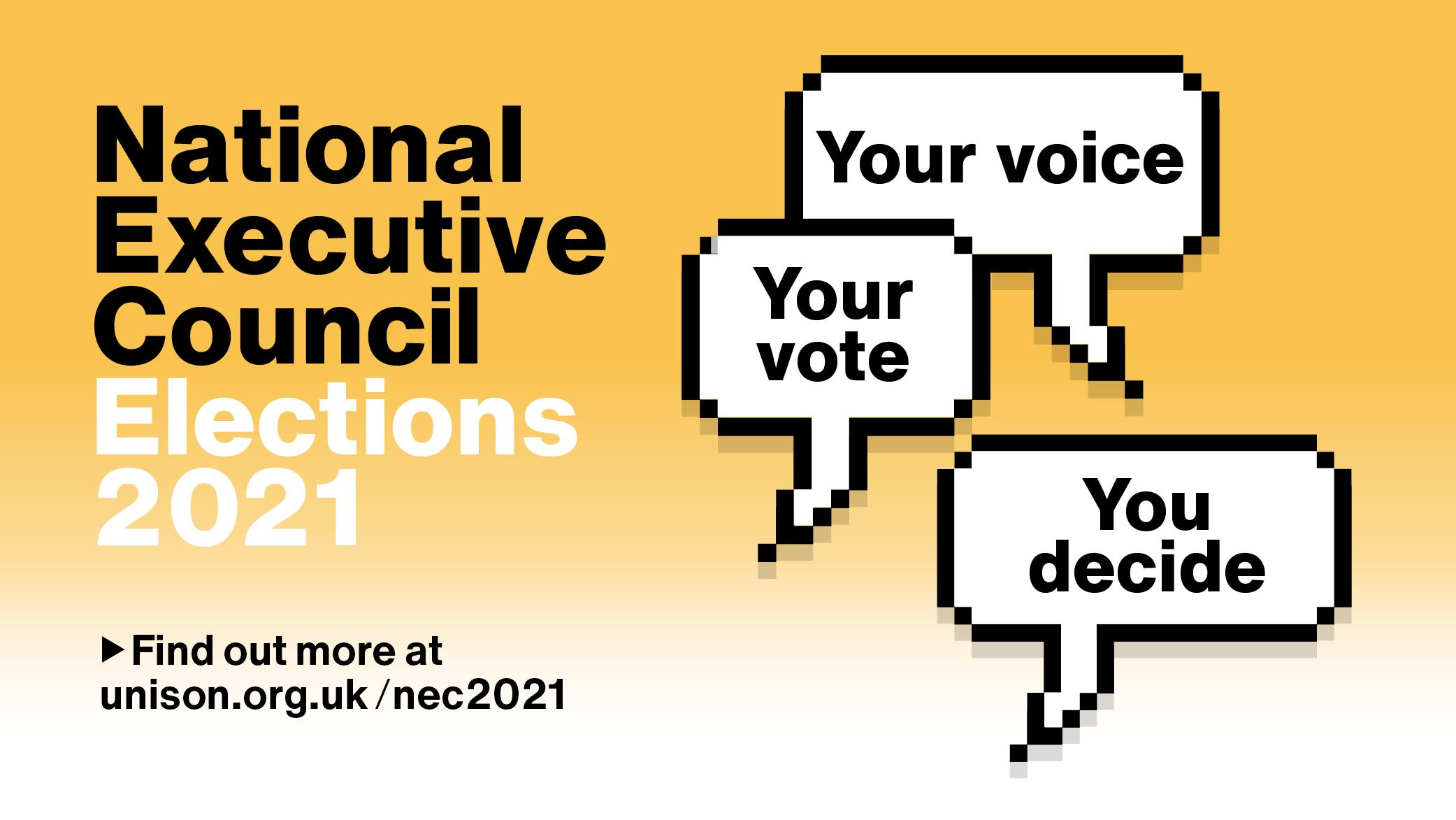 NEC 2021 election graphic